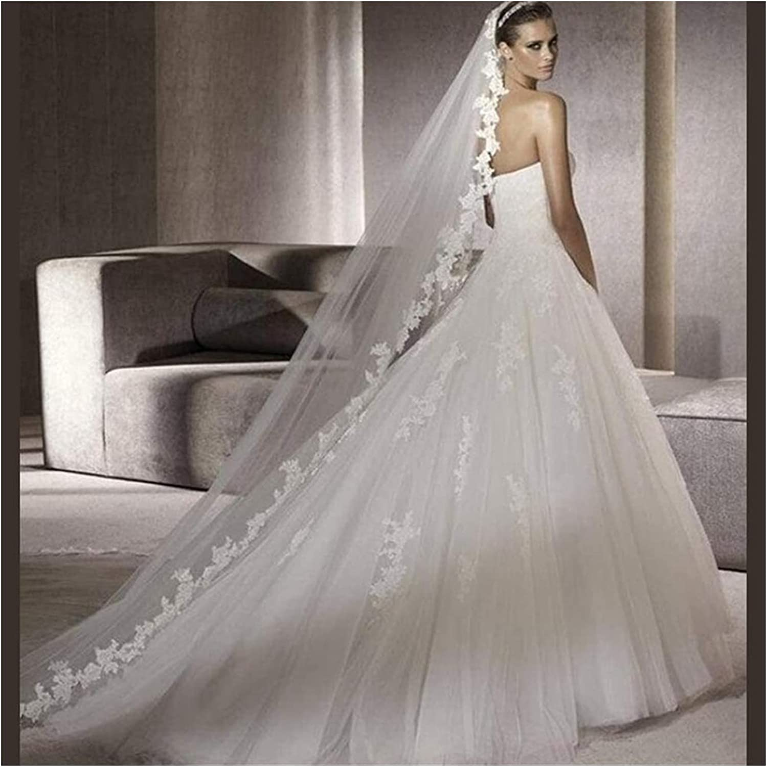 HAQTXI 1T Long Veil Bridal Veil, Application Lace Edge Wedding Veil Soft Tulle Simple Party Cathedral 3 Meters Accessories (Color : Ivory)