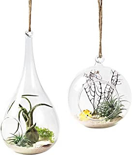 Mkono 2 Pack Glass Hanging Planter Air Plant Terrarium Home Decorations for Succulent Candles, Globe and Teardrop