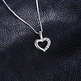 JewelryPalace Collier Pendentif Zircon Cubique en Forme Cœur Amour pour Femme Fille en Argent Sterling 925 Chaîne 43CM