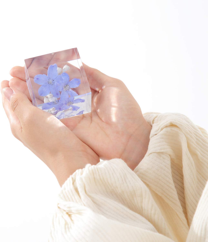 フェリナス ハーバリウム 散らない花 デルフィニューム 合格 お祝い 贈り物 誕生日プレゼント ホワイトデー 母の日 ギフト