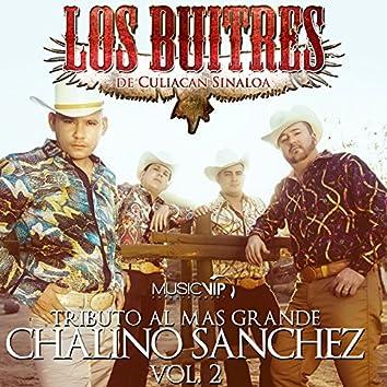 Tributo al Mas Grande Chalino Sanchez, Vol. 2