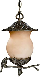 Acclaim 7566BC/CH Avian Collection 2-Light Outdoor Light Fixture Hanging Lantern, Black Coral