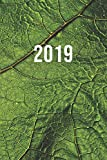 2019: ENE - DIC Agenda Semanal | 152 x 229 mm | 1 Semana en 2 Páginas | 52 Semanas Planificador y Calendario | Hoja Verde