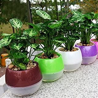 Mkono 3 Pack Self Watering Planter Plastic Flower Pot 5 Inch (Mixed Colors)