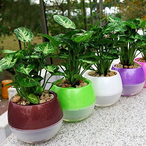 Best Wicking Material For Self Watering Planters