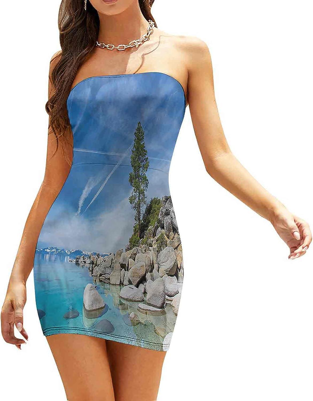 Women's Sleeveless Sexy Tube Top Dress Lake Tahoe at Sunset Dresses