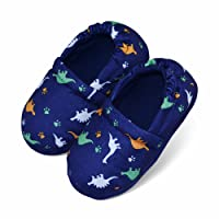 Image of Blue Dinosaur Slippers for Toddlers and Boys