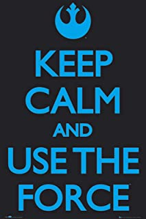 Imaginus Posters Keep Calm and Use The Force Propaganda Spoof Poster (24 x 36 inches)