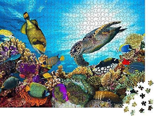 Diy Art Puzzle Adultos Rompecabezas colorido arrecife de coral con muchos peces y tortugas marinas - rompecabezas clásico Clásico Puzzle Decoración -1000 piezas