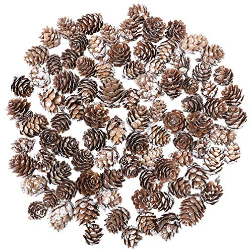 Cooraby 80 Pieces Micro-mini Snow Pine Cones Christmas Snow Pine Cones Ornaments for Home Decoration, Fall and Christmas Crafts