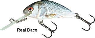 Salmo Hornet 5 Floating, Real Dace