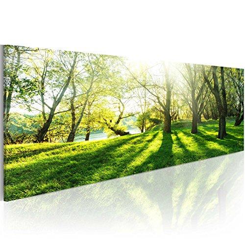 murando - Bilder Landschaft 120x40 cm Vlies Leinwandbild 1 TLG Kunstdruck modern Wandbilder XXL Wanddekoration Design Wand Bild - Natur Bäume Park c-B-0053-b-a