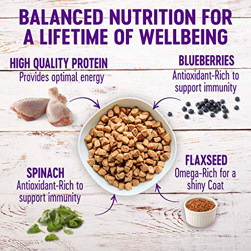 Wellness Complete Health Natural Dry Large Breed Dog Food, Chicken & Rice