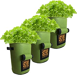 OTT POT Grow Bags Pack of 3-10 Gallon Heavy Duty Non Woven Fabric Planter Bags. Planting Garden Pots with Sturdy Handles &...