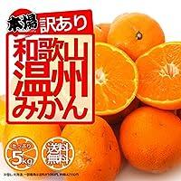 和歌山県産【訳あり】 みかん 5kg 【ご家庭用】