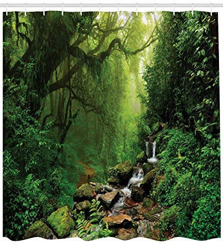 123456789 Bosque en Nepal Sendero Vida Silvestre Primavera Planta y Lluvia de Piedras