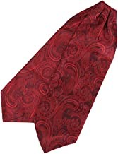 Epoint Men`s Fashion Pre-tied Ascot Tie Paisley Large Cravats for Wedding, Hanky Set, with free Gift Box