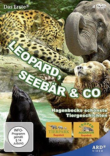 leopard seebär und co sendetermine
