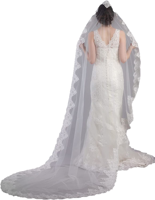 Retro Lace Cathedral Veil 1T Bridal Veil Chapel Length Applique Veil Women's Veil with Comb Tulle Veil for Wedding