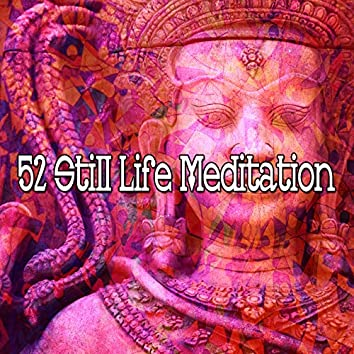 52 Still Life Meditation