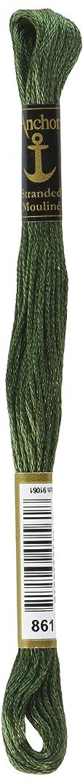Anchor Six Strand Embroidery Floss 8.75 Yards-Laurel Green Medium 12 per Box