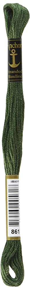 Anchor Six Strand Embroidery Floss 8.75 Yards-Laurel Green Medium 12 per Box
