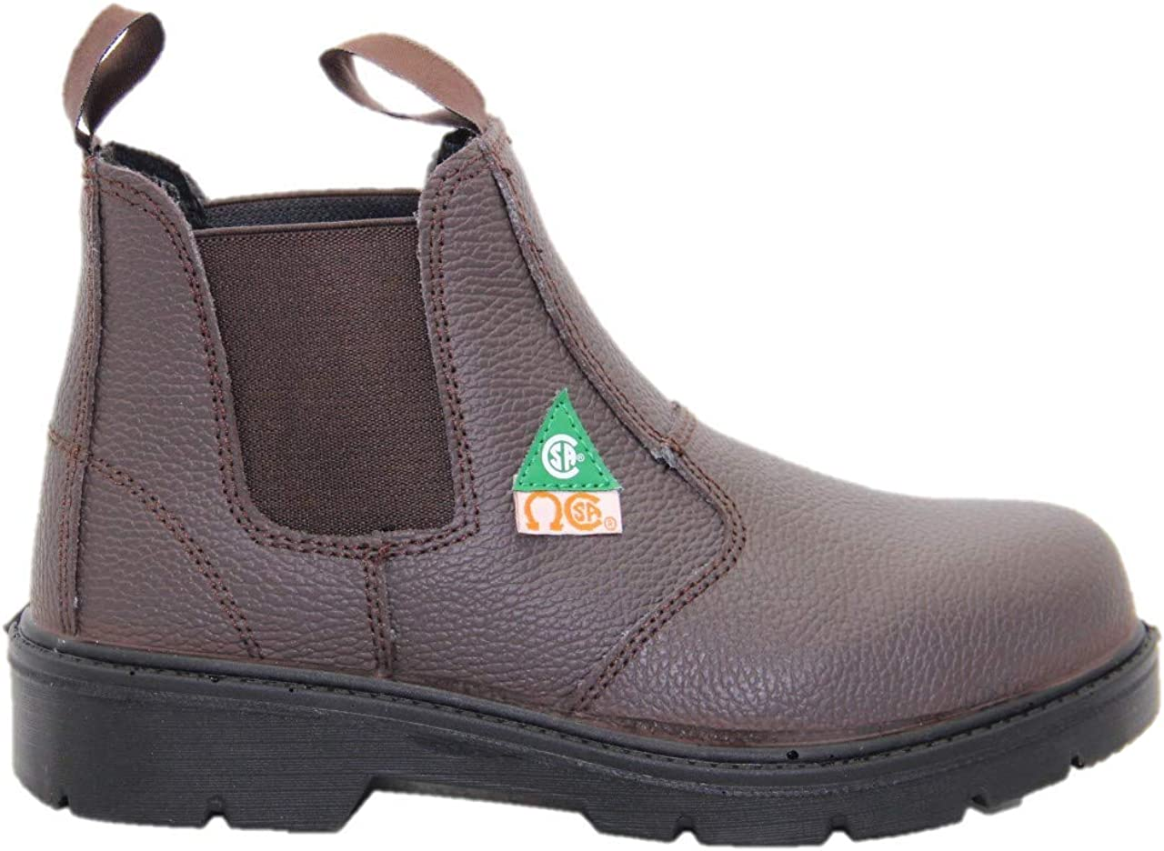Leather Construction booots DOLPHIN D5 US Standard Approved Safety Shoes