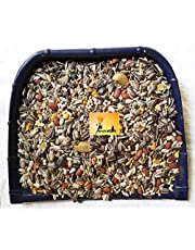 Parrots Wizard Big Parrot Food 31 Types of Seed Mix for African Gray; Macaw;Cockatoo;Indian Parrot;and Other Big Birds (450 grms)