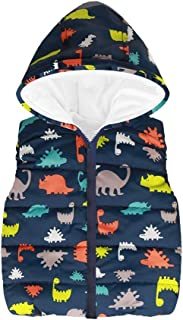 Baby Toddler Girls Boys Waistcoat Coat Autumn Winter Clothes 2-6 Years Old,Kid Cartoon Dinosaur Hooded Tops Vest