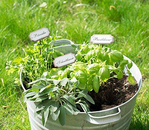 UMOI Gartenstecker Kräuterstecker aus Metall im Shabby Chic Vintage Look für Garten Küche oder Gewächshaus (Pfefferminze)