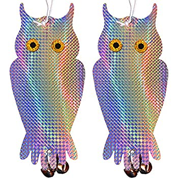 Amazon.com : Ugold 2 Pack Bird Repellent Holographic Reflective Owl - Pigeon, Woodpecker Deterrent : Garden & Outdoor