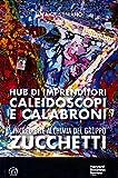 L'incredibile alchimia del gruppo Zucchetti. Hub di imprenditori, caleidoscopi e calabroni...