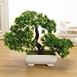 Made of high quality material, safe, healthy, non-toxic and environmentally Not only a good home decorations, but also a good gift to your friends Branch design can vary Artificial bonsai, easy to keep, no watering or falling leaves Suitable for plac...