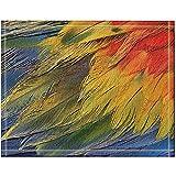 JHDF Decoración Tribal Plumas de Colores Alfombras de baño Entradas de Piso Antideslizantes Alfombrilla de Puerta de Interior al Aire Libre Alfombra de baño de 40 * 60 cm