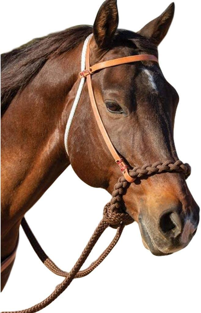 Professionals Ranking TOP4 Max 82% OFF Choice Hackamore Loping