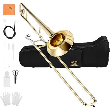 Eastar Trombone Tenor Slide Trombone Bb Tenor Trombone B Flat Gold Lacquer Student Trombone Beginner with Carrying Bag Hard Case, Mouthpiece, Cleaning Kit Standard Trombone Full Kit, ETB-330