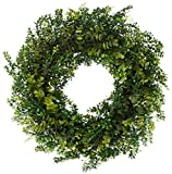 The Wreath Depot Arbor Artificial Boxwood Wreath 22 Inch, Year Round Full Green Wreath, Approved for Outdoor Display, Beautiful Gift Box Included