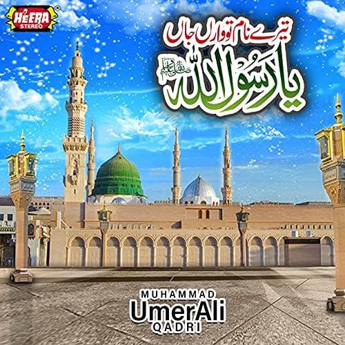 Muhammad Umer Ali Qadri