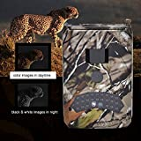 Zoom IMG-1 fotocamera caccia coolif 1080p macchina