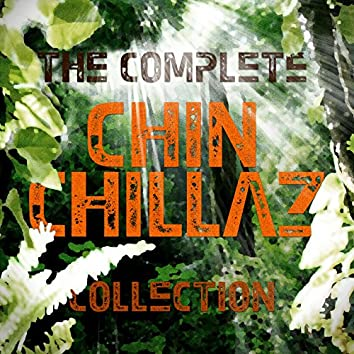 Complete Collection - 30 downtempo and dub choones
