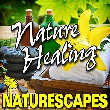 Nature Healing (Nature Sounds)