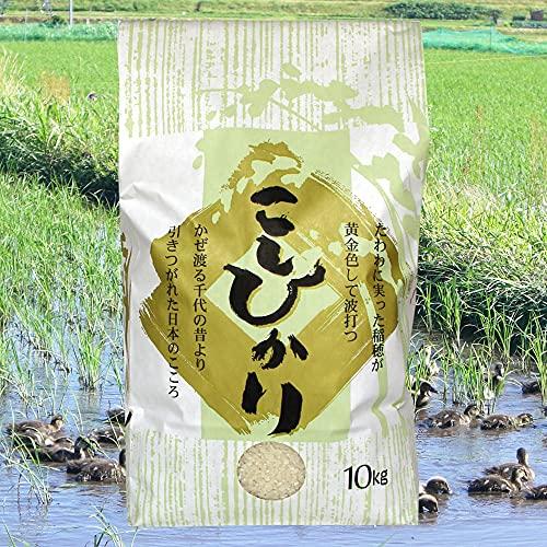 無農薬米コシヒカリ 白米(精米) 10kg[即日発送]/アイガモ農法で育てた安心・安全の新潟米