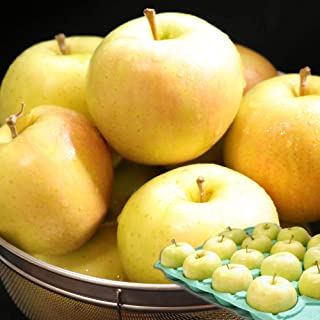 青森 りんご 5kg箱 トキ 家庭用 青森県産リンゴ5キロ箱 大小様々