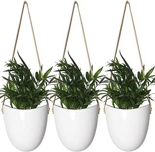 Best plant pot art Reviews