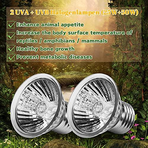 LEDBOKLI Lámparas térmicas para terrarios