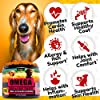 Kinpur Omega Fish Oil for Dogs - Itch Relief for Dogs and Anti-Shedding - Skin and Coat Supplement - Dog Vitamins for Allergies, Joint Health, Immunity with Epa and Dha- Omega 3 Dog Chews #1