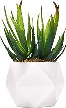 Artificial Succulent Plants, Artificial Aloe Agave Succulent Textured Aloe Fake Mini Succulent Plants Arrangement for Table Office Indoor Outdoor Stair Balcony Garden Home Decor