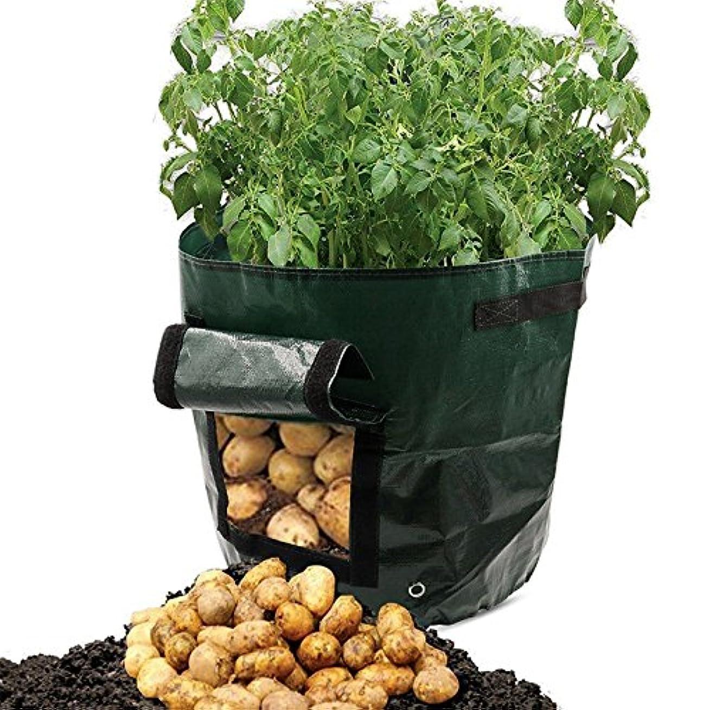 独立麻痺させるとクインウィンド グレードン50L 大容量ジャガイモ成長プランター PE コンテナー Vefetable 袋太郎甘いトマトポーチウィンドウ -