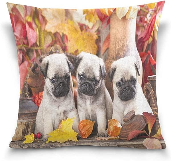 Dweobolufz Square Throw Pillow Case Decorative Cushion Cover Pillowcase Autumn Maple Leaves Cute Puppy Pug Dog Throw Pillow Case Cushion Cover For Sofa Couch 18 X 18 Inch