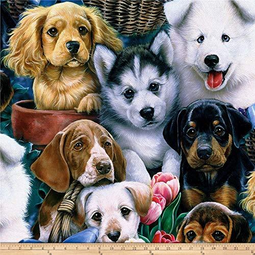 David Textiles Wildlife Prints Valentine's Puppies Fleece Multi Fabric by The Yard, Multicolor